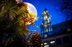 boston tree lighting bostonattitudebostonattitude