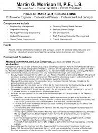 Sample Resume For Nanny by Vp Engineering And Land Surveying Resume Vp Engineering And Land