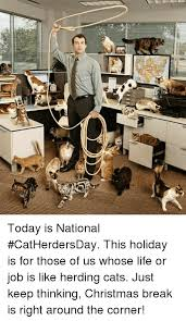 Herding Cats Meme - e today is national catherdersday this holiday is for those of us
