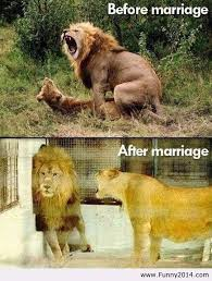 after marriage quotes before and after marriage funny2014 image 1089646 by