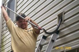 Snake In The Backyard by Snake In The Attic Entry Nesting Sites U0026 Removal