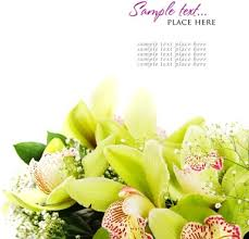 Beuti by Beautiful Images Free Stock Photos Download 5 301 Free Stock