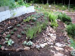vegetable garden mulch ideas picture landscaping u0026 backyards