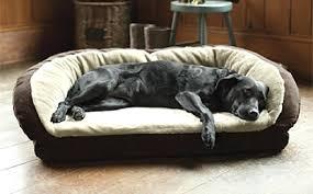 Burrowing Dog Bed Therapeutic Dog Beds U2013 Thewhitestreak Com