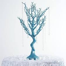 manzanita tree best 25 manzanita tree ideas on manzanita tree