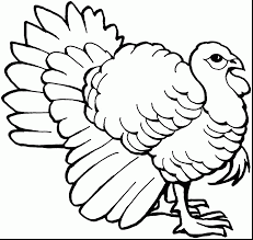 turkey outline printable 11153