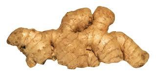 ginger png images pngpix
