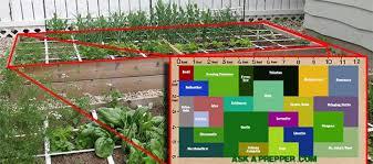 an awesome 72 square feet shtf medicinal garden plan ask a prepper