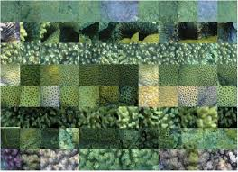 remote sensing free full text image based coral reef