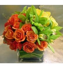 Westwood Flower Garden - 35 best orchids images on pinterest flower arrangements flowers