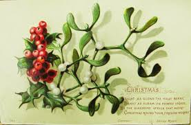 christmas plant botanical accuracy the mistletoe or is it