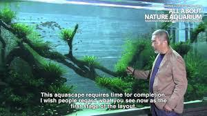 Japanese Aquascape by Takashi Amano Sumida Aquarium Final Episode Youtube
