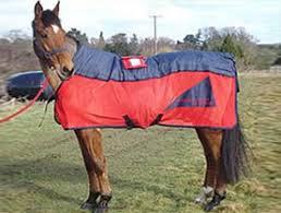 combi sport pulsed electromagnetic and massage rug u2013 equine