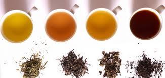 Teh Hitam minuman tradisional teh hitam dan teh hijau ceritakeluarga
