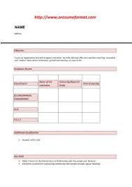 Resume Summary Ideas Resume Summary Examples For Freshers How To Write A Resume