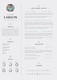 Macbook Resume Template Free by 13 Slick And Highly Professional Cv Templates Guru Apple Pages