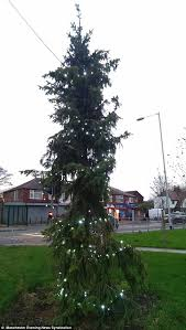 christmas tree no lights britain s worst christmas tree in brinnington is nicknamed the