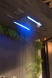 lighting store stamford ct lighting led klaffs lighting ceiling with decorative green plant