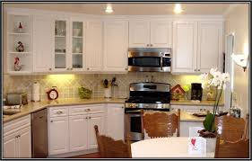 Home Depot Cabinet Paint Painting Vs Refacing Kitchen Cabinets Magnificent On Kitchen