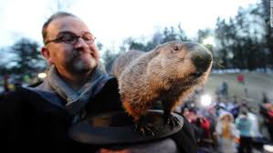 groundhog inquiry digs dirt punxsutawney phil cnn