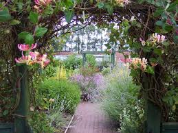 best trellis ideas only on pinterest flower vines and pergola