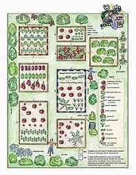 Companion Garden Layout Cross Grade Buddies Plant Garden Companions Garden Org