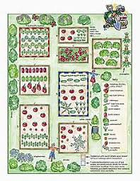 Companion Gardening Layout Cross Grade Buddies Plant Garden Companions Garden Org