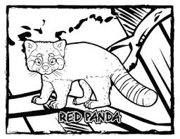 coloring pages of animals in their habitats in their habitat coloring page u0026 poster combo volume 1