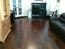 Laminate Flooring Houston Living Area Flooring Houston Pet Floors