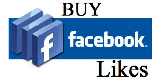 facebook fan page followers i will add 30 000 twitter followers or 5000 real fan page likes for