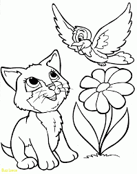 coloring page of a kitty coloring page kitty best of activity for kids coloring pages kitten