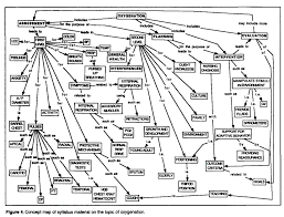 Concept Map Nursing Concept Maps Linking Nursing Theory To Clinical Nursing Practice