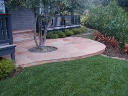 arizona flagstone patio with olive tree traditional landscape