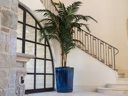 floor plant services of robert lawrence designs florist dallas texas
