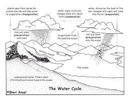 Water Cycle Worksheet Pdf Cycle