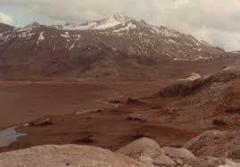 tundra tundra wikiwand