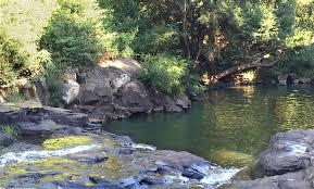 Gardeners Falls Maleny - gardners falls visit sunshine coast
