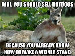 Kangaroo Meme - sexually forward kangaroo memes quickmeme