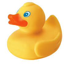 4060 rubber duck