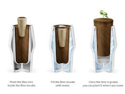 biodegradable urn a biodegradable urn that uses the cremated remains of loved ones to