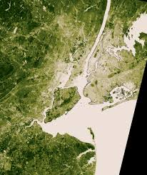 New York vegetaion images New york city temperature and vegetation image of the day jpg