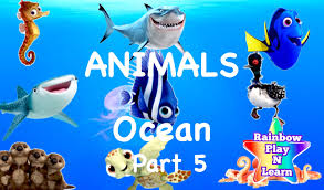 learn sea animals u0026 water animals names and sound real ocean sound