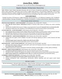 international resume format for mba search engine optimization resume example seo operations