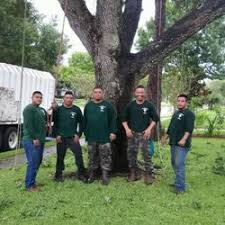 gilbert s tree service 15 photos 40 reviews tree services