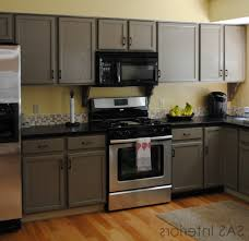 outstanding painting particle board kitchen cabinets also trends