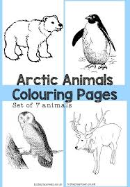 167 free coloing pages images coloring books