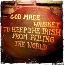 Funny Irish Memes - 8 best irish images on pinterest irish memes hilarious and