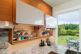 Pepper Shaker Cabinets Lift Up Hinge Kitchen Contemporary With Glass Cabinet Doors