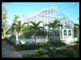 florida native butterfly plants conservatory rates the florida native butterfly society 501c3