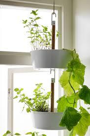 White Hanging Planter by Garden Design Garden Design With Bittergurka Hanging Planter
